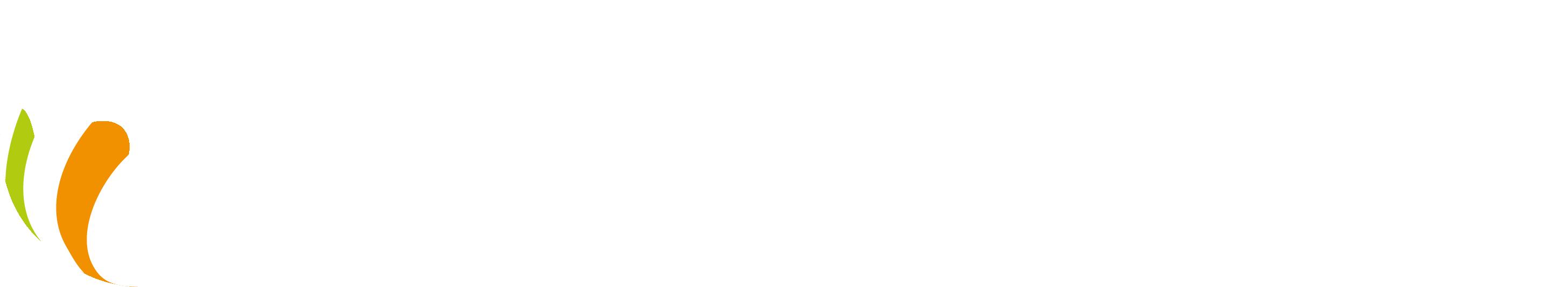 logo-PRIME-R-white